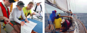 Practical Tips for Survival at Sea