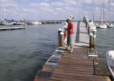 Hard Antifouling Paints and Haulouts