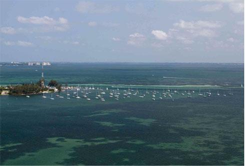 Florida's Anchoring Debate Heats Up