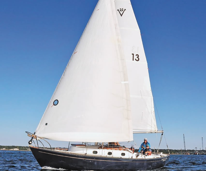 Vineyard Vixen 29